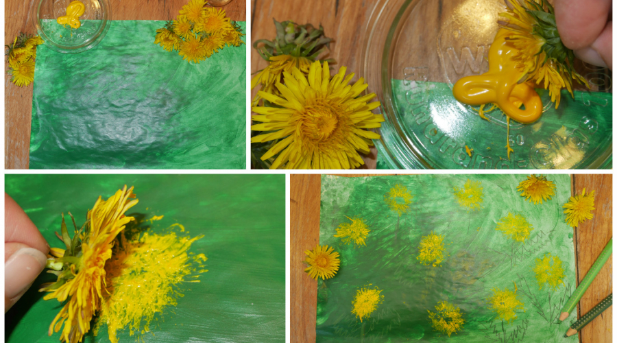 Löwenzahn Stempel kreativ im Kindergarten