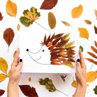Wochenprojekt Der Herbst Ist Da Wir Entdecken Die Dritte